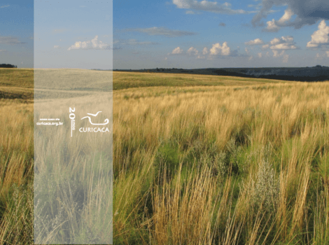 Comitê vai participar do processo de atualização das áreas prioritárias para conservação do Pampa