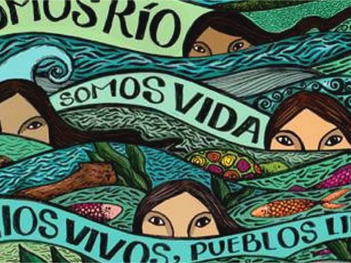 Comitê defende direito dos rios na 1ª Pororoca da Nação das Águas