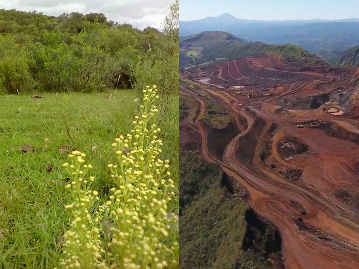Comitê entrega Manifesto contra o projeto de mineração Fosfato Três Estradas ao MPF