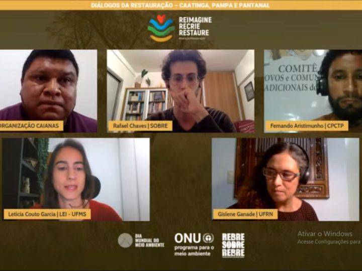 Comitê dos Povos e Comunidades Tradicionais do Pampa participa de Webinário Diálogos da Restauração – Caatinga, Pantanal e Pampa alusivo ao Dia Mundial do Meio Ambiente